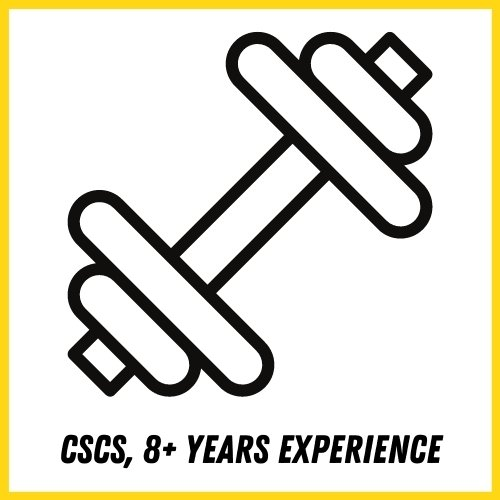 cscs and training experience