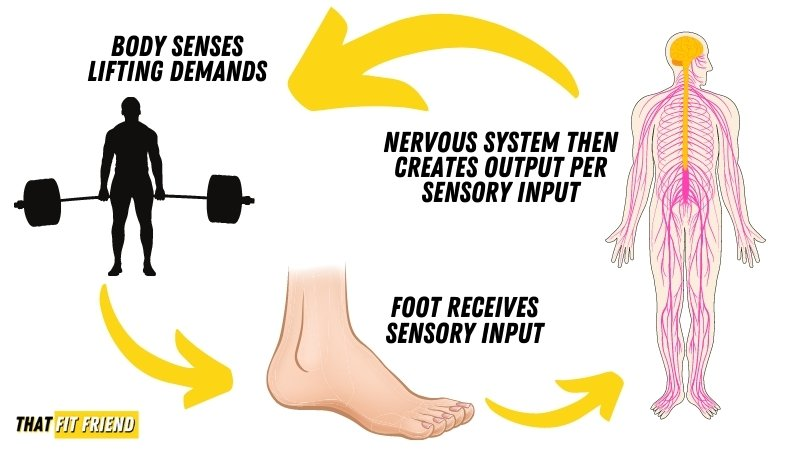 are barefoot shoes good for lifting